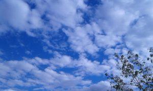სანამ სახლიდან გახვალთ – ამინდი დღეს