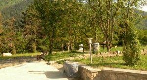 ლიკანის პარკს ეროვნული მნიშვნელობის კატეგორია მიენიჭება