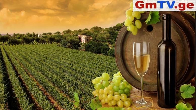 მსოფლიოში უძველესი ღვინო საქართველოშია აღმოჩენილი